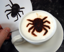 spider coffee